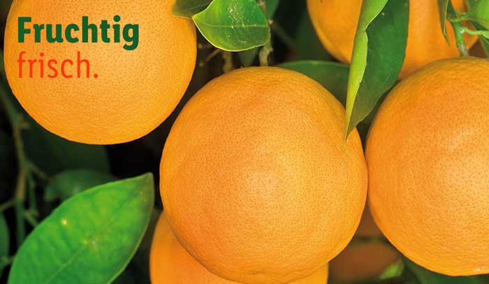 LIDL Obst